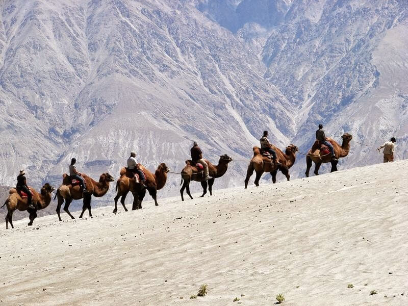 Magnificient Ladakh Tours - 10 Days
