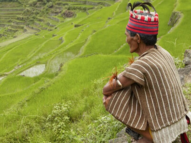 Visayas & the Rice Terraces - 14 Days