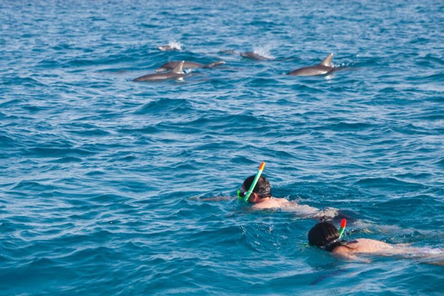 Swimming- Snorkeling