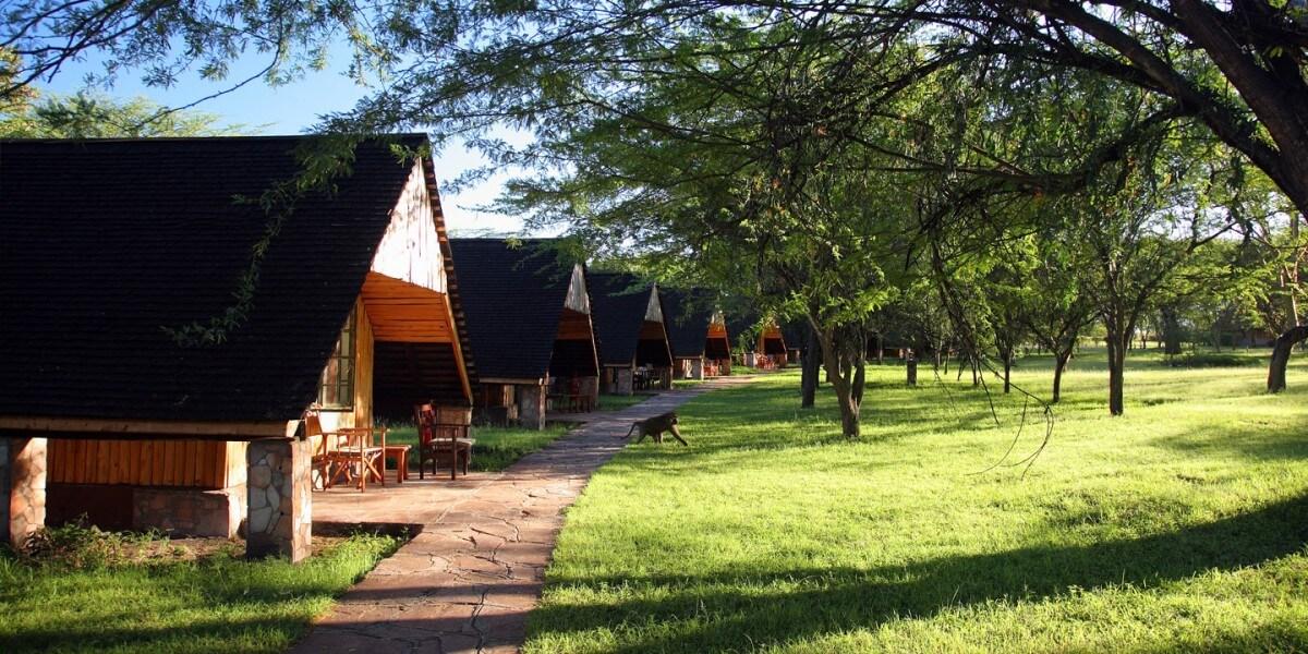 Masai Mara & Mount Kenya - Premium Schedule