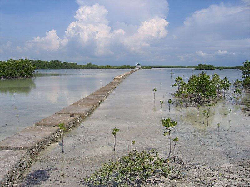 The Visayas & Palawan - 14 Days