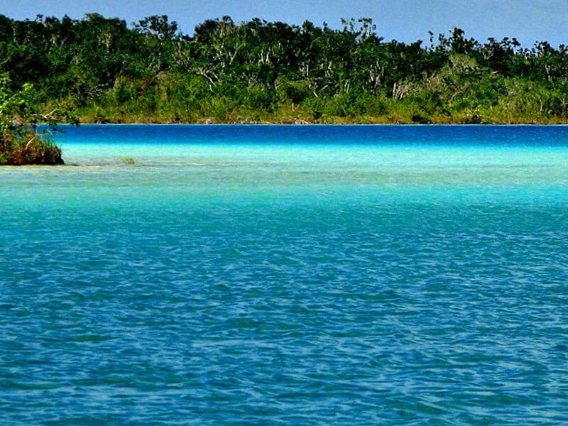 Transfer to Bacalar