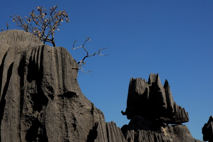 Tsiribihina River West 8 nights & 9 days from Antananarivo
