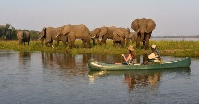 Tanzania luxury safari
