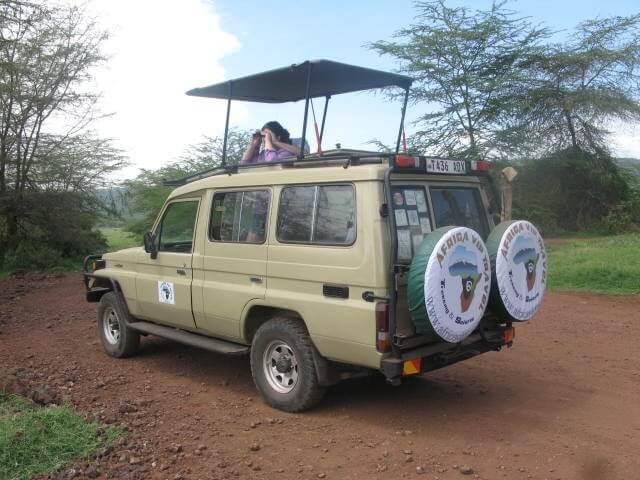 Ngorongoro Crater, game driv