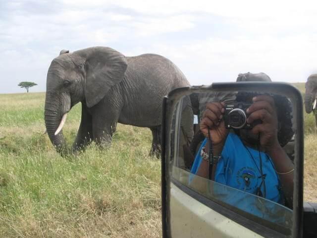 Authentic Migration Safari