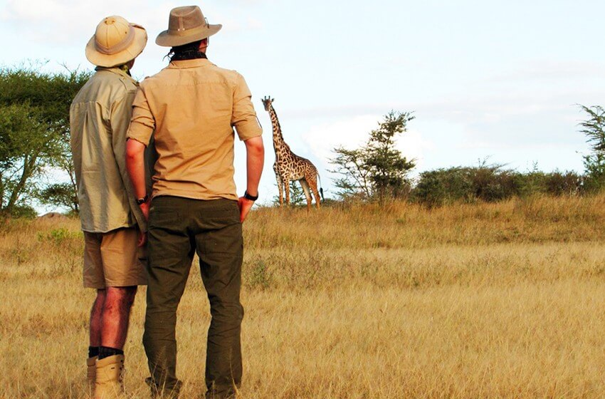 Serengeti and Beyond - Schedule