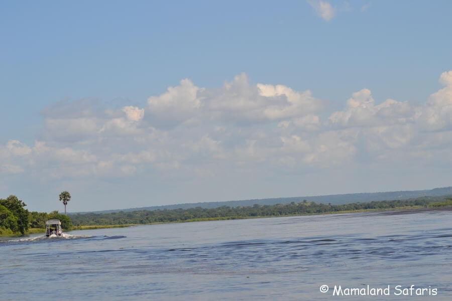 Murchison Falls NP safari