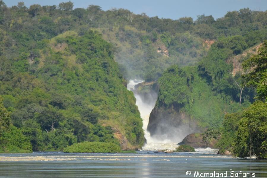 Murchison Falls NP safari