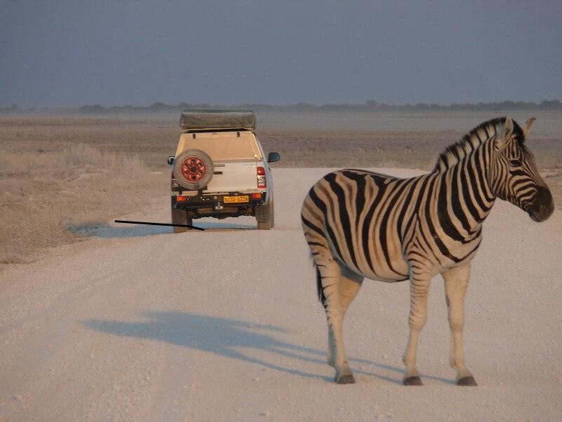 Classic Namibia Self-Drive Safari