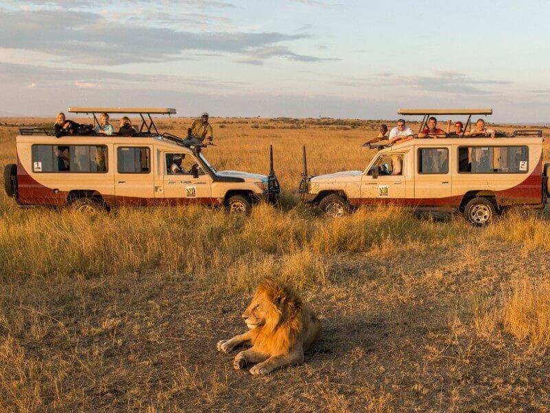 7 Days Masai Mara Serengeti Ngorongoro Arusha/Nairobi