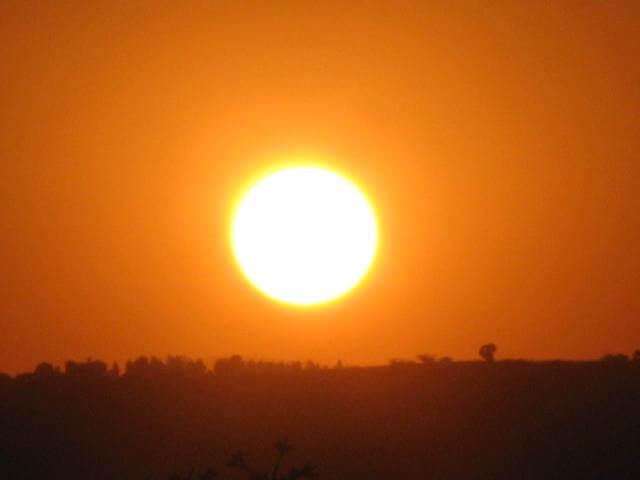 Day 10 - Tarangire/Arusha/De