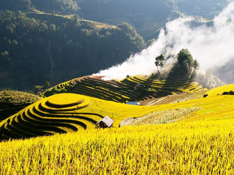 RICE TERRACE FIELDS - NORTHERN NATIONAL HERITAGE SIGHTS