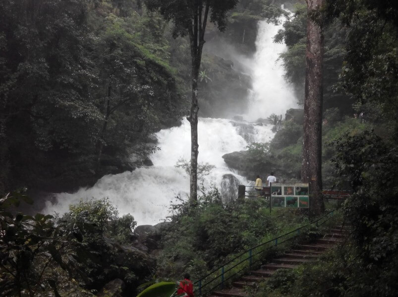 5 Days Coorg Tour Package