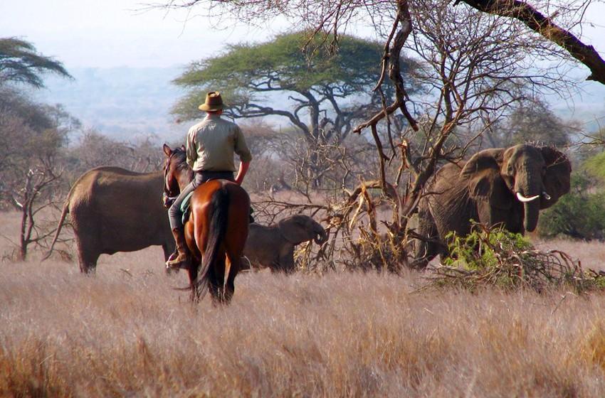 Kenya & Tanzania adventure - Schedule