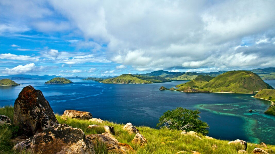 Komodo Dragon Tour