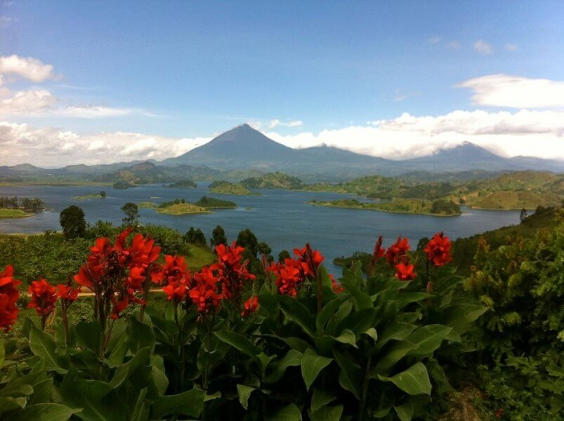 12 Days - Uganda and Rwanda Primate Tour