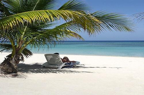 Mayas & Playas