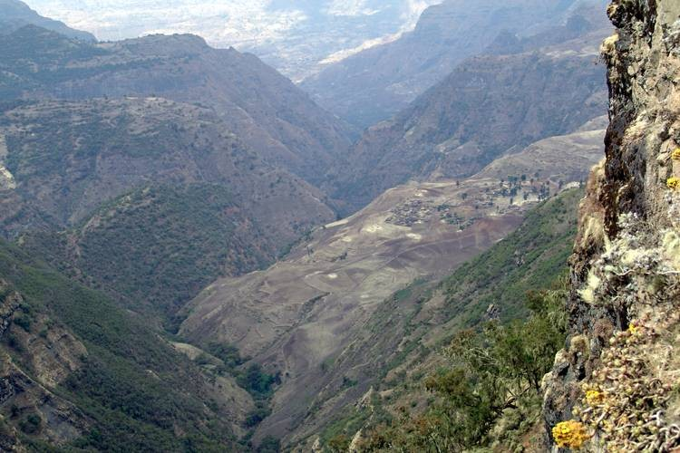 7 days Simien Mountain Trekking