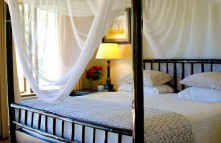4-Day Exclusive Lodge Timbavati Private Nature Reserve