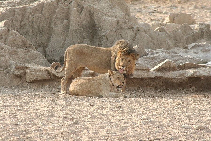 14 Day Namibia Highlights