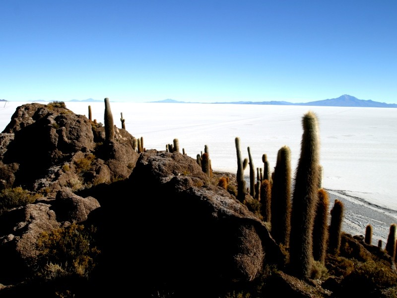 Bolivia, from Altiplano to Subtropical Valleys