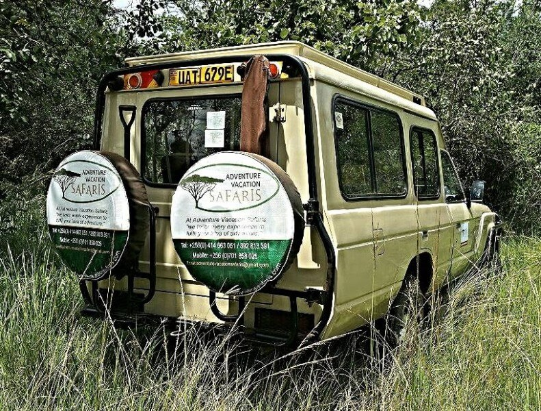 Game Drive & transfer to Kam