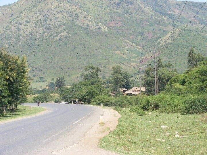 Transfer to Bwindi