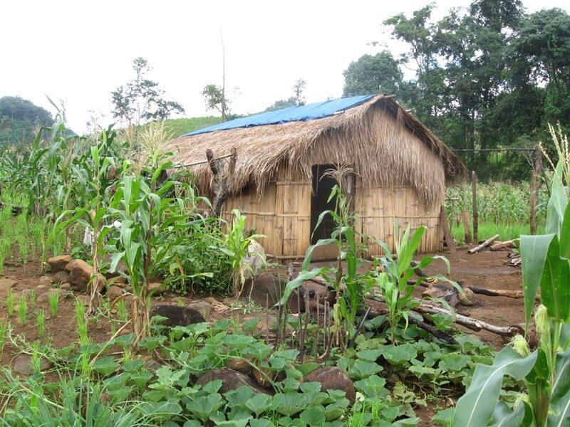 Sen Monorom- Phulung Village