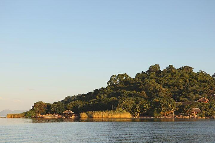 Day on Blue Zebra Island