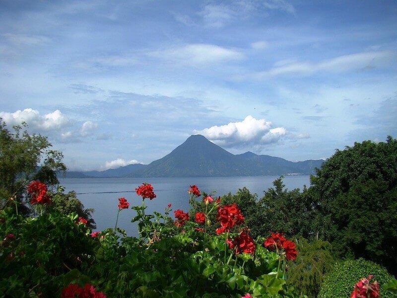 Birding at Highlands & Volcanoes