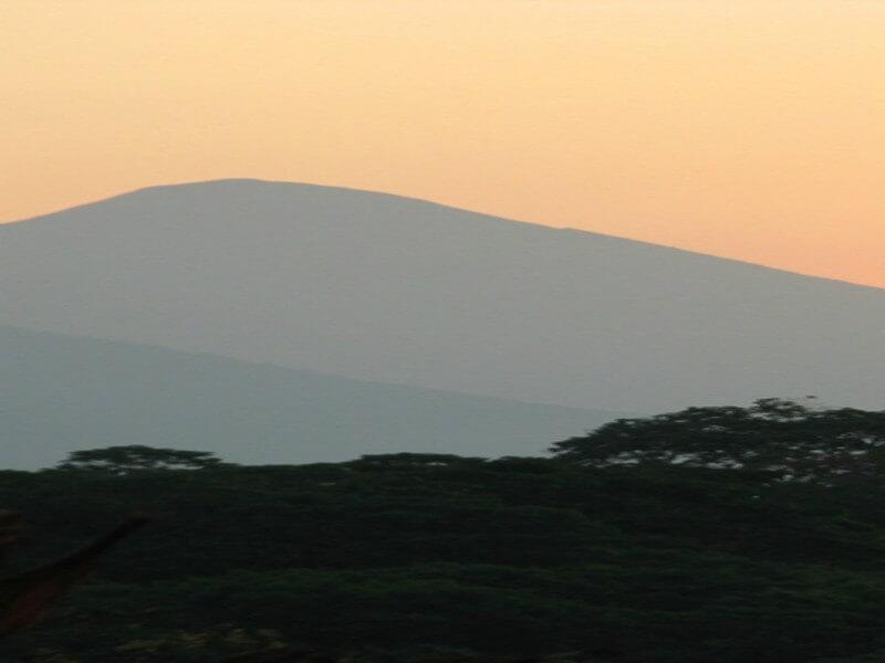 Las Nubes Coffee Plantation