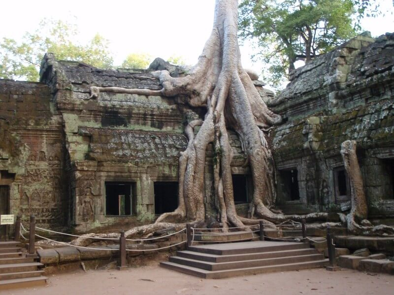 THE MAJESTIC ANGKOR TEMPLES
