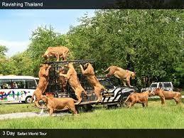 SMILE THAILAND -BANGKOK & PATTAYA 10 DAYS 9 NIGHTS