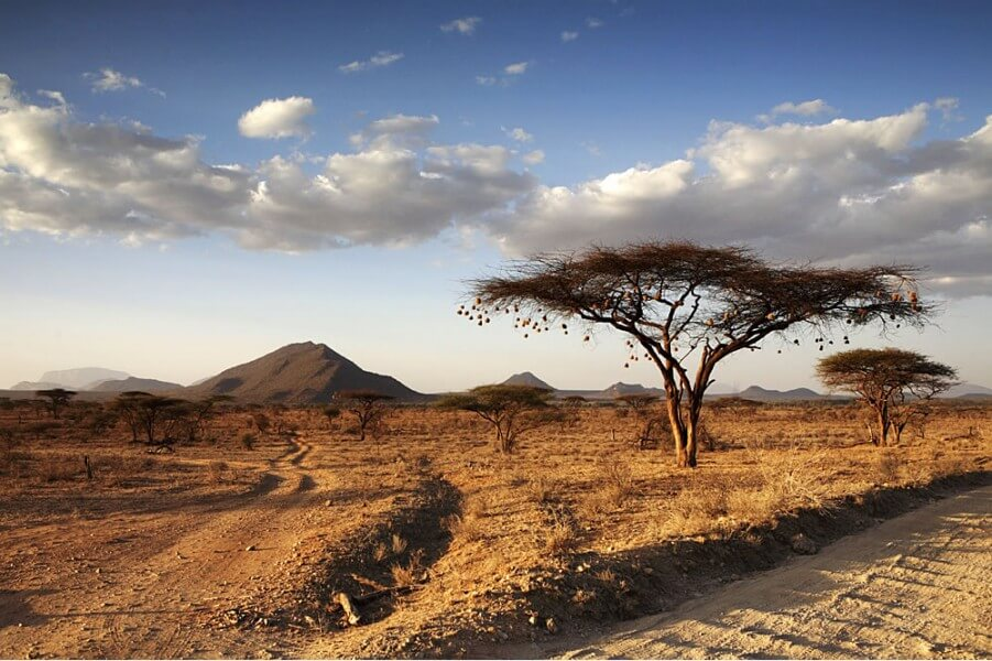 SAMBURU RESERVE - FULL DAY