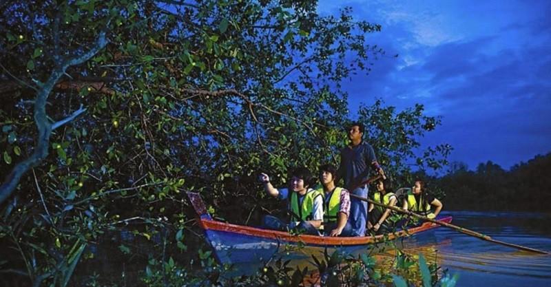 Pangkalan Fireflies
