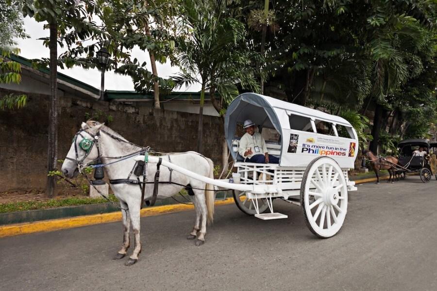 6D5N Manila Bohol Cebu