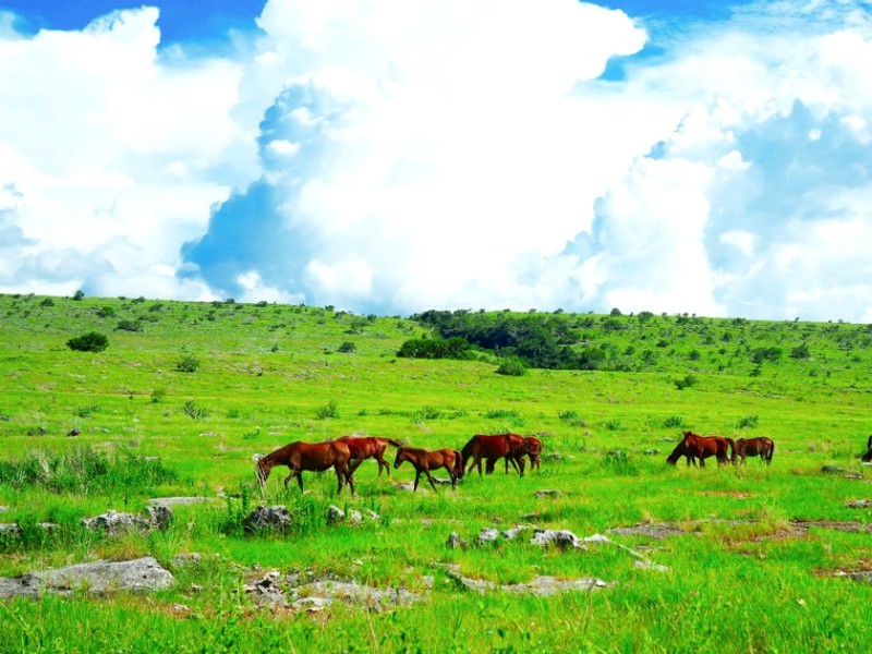 Sumba, the Land of Marapu