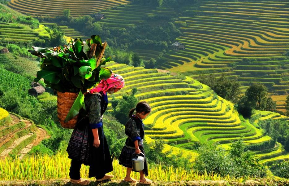 Hanoi - Sapa - Halong 7D6N Package