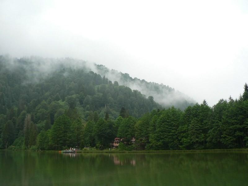 Mencuna, Borcka Karagol