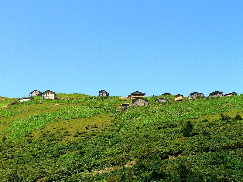 Macahel Yaylas (Highlands)