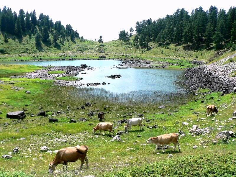 Savsat and its Lakes