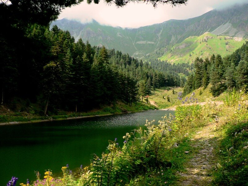 Eastern Black Sea