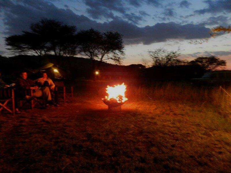 Serengeti Classic