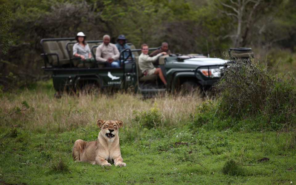 Pure Wildlife Safari - 6 Nights