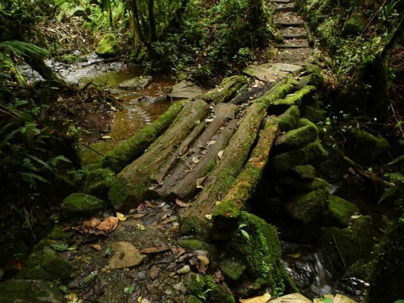 NATURAL PARADISE TRIP