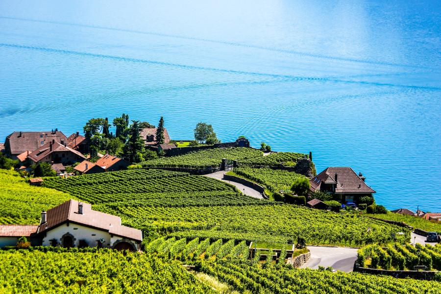 Active Switzerland in 14 days