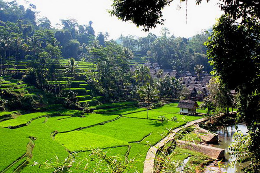 BEST SELLER: 6 Days JAVA HIGHLIGHTS until Bali