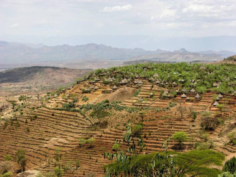 Tour to Rift Valley and Yabello by flight and surface for 7 nights/ 8 days