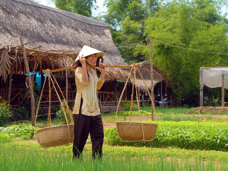 Hightlights of Vietnam - 8 days